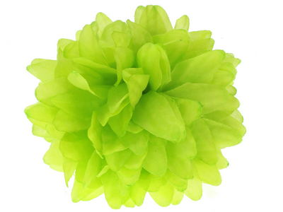 Lime Flower Claw Clip Clamp