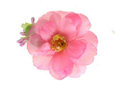 Pink Wild Rose Beak Hair Clip