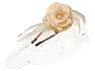 Peach Rose Net Band