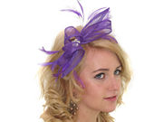 Purple Crystal Looped Fascinator Band