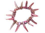 Toothed Shell Bracelet - Pink